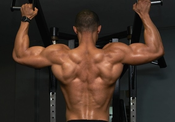 The Best Upper Back Exercises For Width And Thickness Myolean Fitness 1