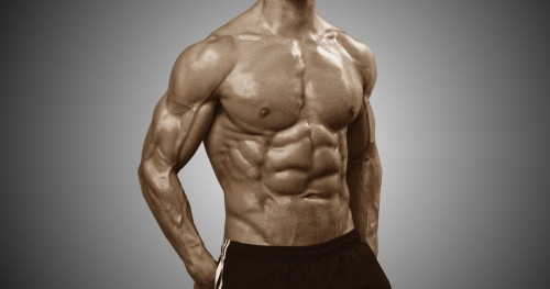 How to Build Muscle (Nutrition) - Myolean Fitness 800