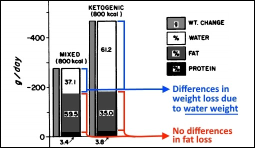 Ketogenic Diet for Fat Loss - Myolean Fitness Figure 1